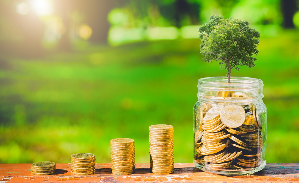 Lowering Your Cost of Capital Through Effective ESG Disclosure