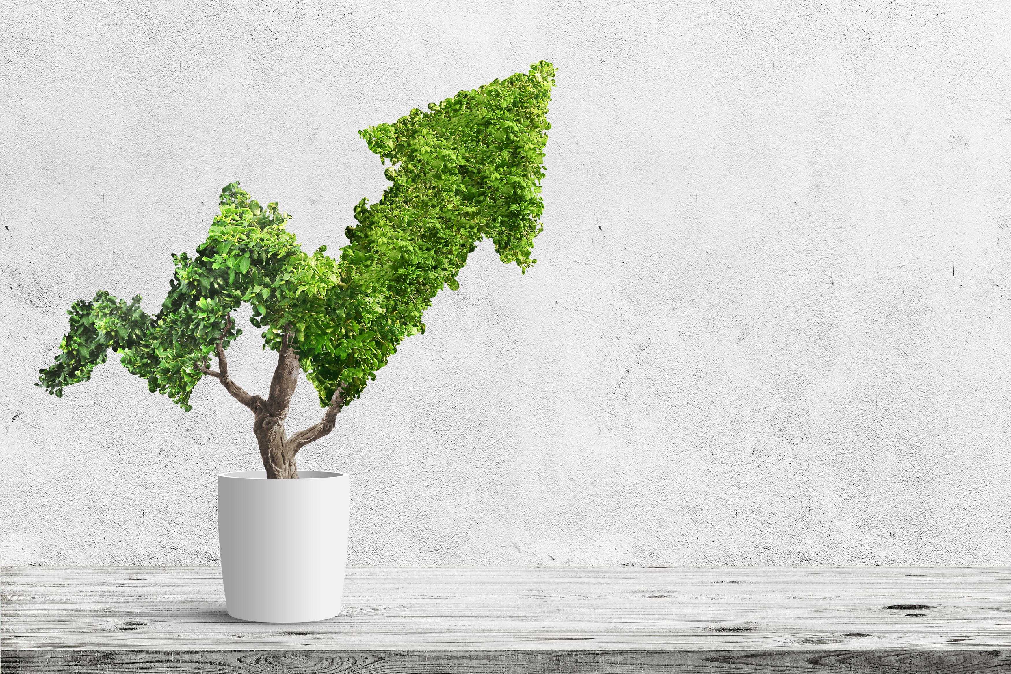 InspIR Group anuncia parceria voltada à integração ESG e Relações com Investidores  com a Third Economy